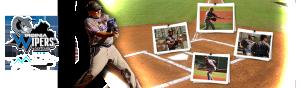 Vipers Softball for Veterans